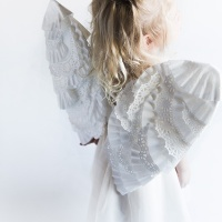 Liz's lovely #DIY #Upcycled Fairy Wings