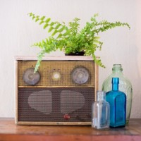 #DIY Radio Planter