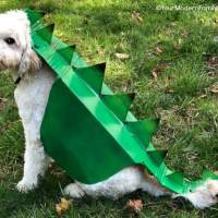 #Upcycled #Dinosaur Dog Costume