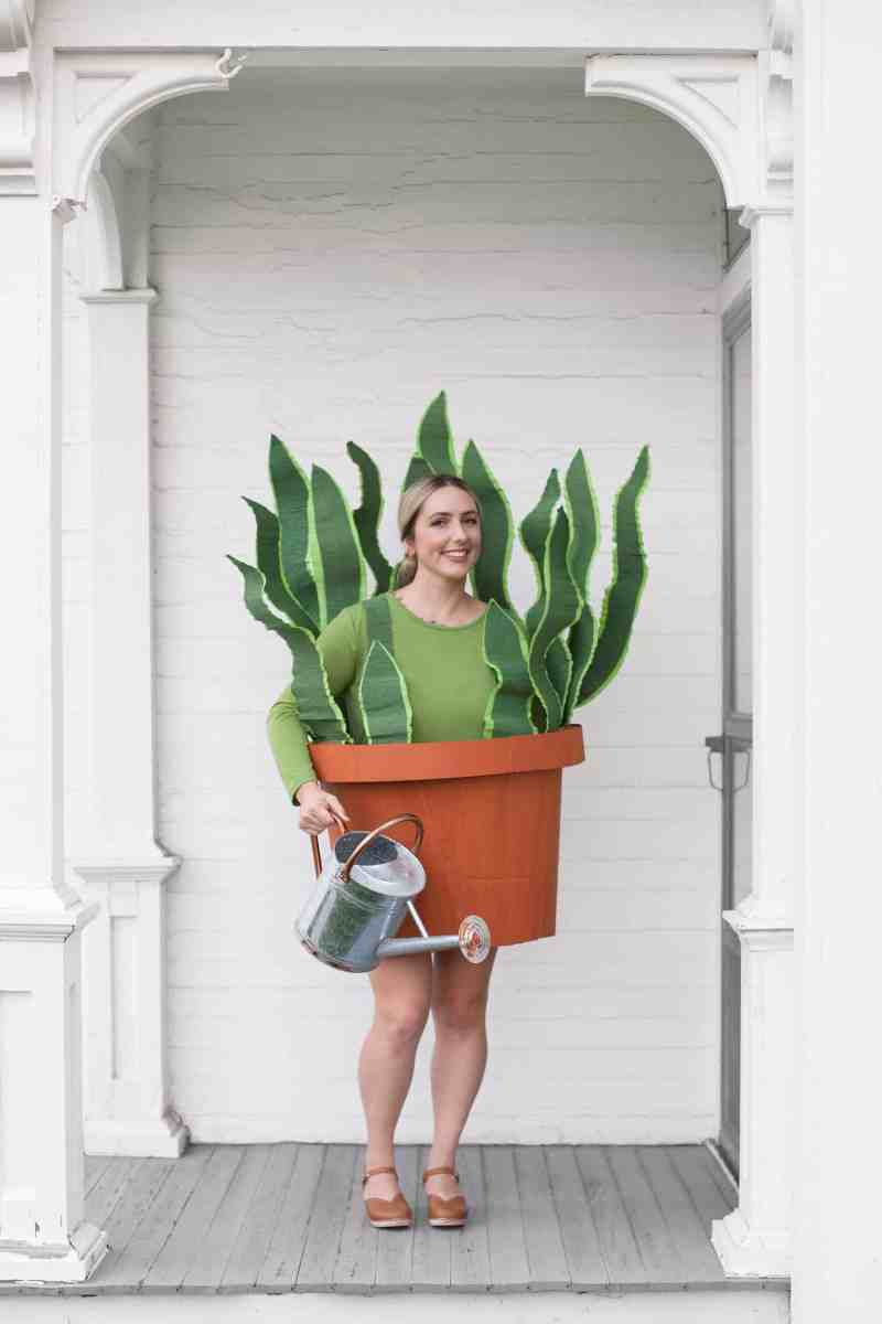 #Upcycled House Plant Costume