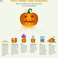 #HowTo reuse that #Halloween pumpkin